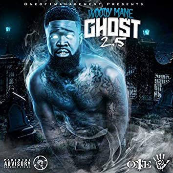 Ghost 2.5
