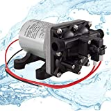 Shurflo Water Pump 4008-101-A65 3.0 GPM | RV 12V Water Pump | Self-Prime | Camper Water Pump | RV Plumbing | Optional Strainer (1 Pump, No RecPro Strainer)