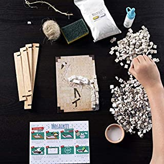Fat Brain Toys Make A Real Mosaic - Flamingo Arts & Crafts for Ages 8 to 12