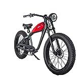 CIVIBIKES 48V 750W Bafang Vintage Electric Bike Fat Tire Cheetah Beach Cruiser Electric Bike (PLATINUMGRAY/REDTANK 17.5Ah)