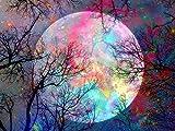 WISKALON DIY pintura al óleo Luna, Pintar por Numeros para Adultos y principiantes pintura por números con Pinceles y Pinturas Sin Marco 16 * 20 Pulgadas