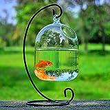 ADFBL Tanque de peces, mini acuario, decoración para el hogar, jarrón de cristal para colgar en la tienda de flores, campo de ventas, soporte de hierro forjado negro
