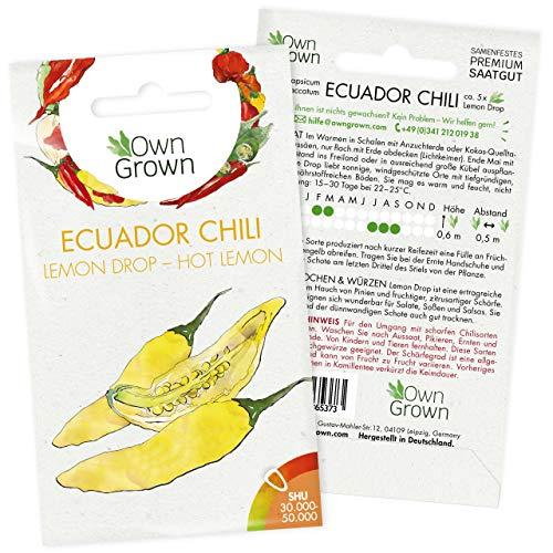 Chilisamen Lemon Drop: 5 Premium Lemon Drop Chili Samen zum Anbau von Chili Pflanzen für Balkon und Garten – Hot Lemon Chilli Samen für frische Chilipflanzen – Ecuador Chili Samen scharf von OwnGrown