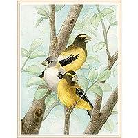 クロスステッチ 大人のためのクロスステッチキット 枝に3羽の鳥 40x50cm 11CT番号別刺繍キット手作りキットパンチ針刺繍DIY初心者向け手作りスターターキット