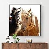 ganlanshu Pintura sin Marco Africano Tigre Salvaje Animal Arte Lienzo póster e impresión Arte de la Pared decoraciónCGQ7475 60X60cm