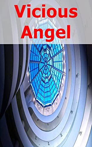 Vicious Angel (Afrikaans Edition)