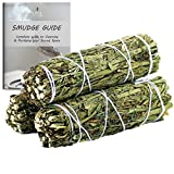 Ancientveda Ruda Rue Smudge Sticks 3 Pack for Cleansing, Meditation, Yoga, and Smudging with Smudge Starter Guide