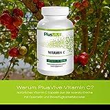 Zoom IMG-1 plusvive vitamina c naturale con