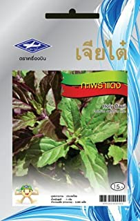 Red Holy Basil (2300 Seeds) Seeds - 1 Package From Chai Tai, Thailand