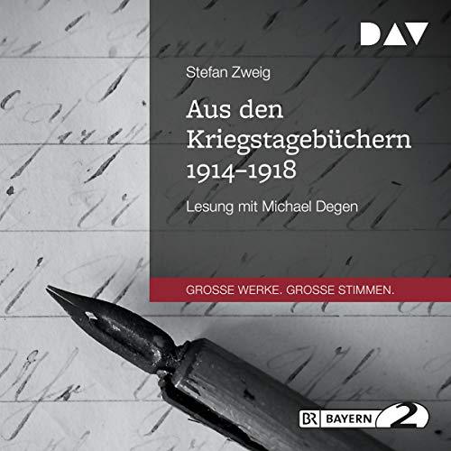 Aus den Kriegstagebüchern 1914-1918 audiobook cover art
