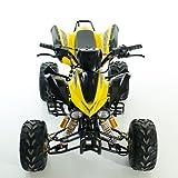 Kinder Quad ATV 125 ccm schwarz - 4