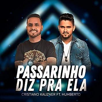 Passarinho Diz pra Ela (feat. Humberto)
