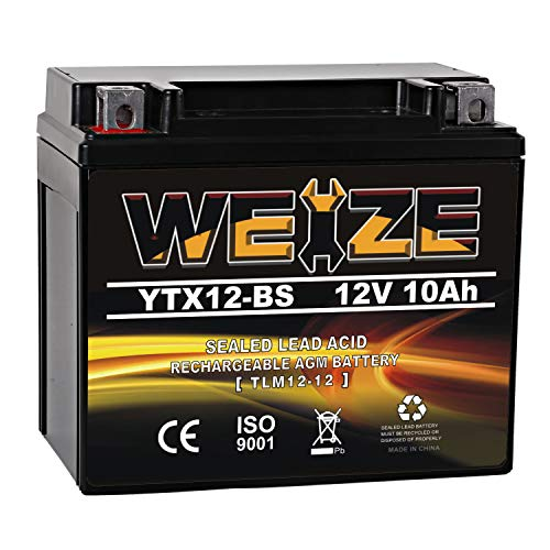 Weize 12V Motorcycle Battery