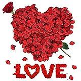 RANJIMA Petali di Rosa, 3000 Pezzi Petali di Rosa Rossa finti, Petali Rose Rosse, Rose Petals per Matrimonio Festa di San Valentine Decorazione Festa di Compleanno Casa Deco Atmosfera Romantica