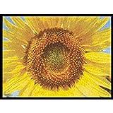 WMK Fußmatte Schuhablage - Sonnenblume - Sunflowe