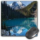 Mouse Pad Gaming Funcional Conjunto de Lago Alfombrilla de ratón Gruesa Impermeable para Escritorio Lago en el Norte de Canadá con árboles Delgados y Foto congelada Nevada de la montaña,Verde Blanco,