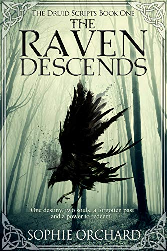 The Raven Descends: The Druid Scripts Book one (English Edition)