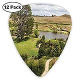 Selecciones de guitarra Overhill Matamata Nueva Zelanda Set de película Hobbit Land Village Imagen del set de película, para bajo Guitarras eléctricas acústicas-12 Pack