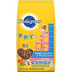 PEDIGREE Puppy Growth & Protection Dry Dog Food Chicken & Vegetable Flavor Dog Kibble, 3.5 Lb. Bag