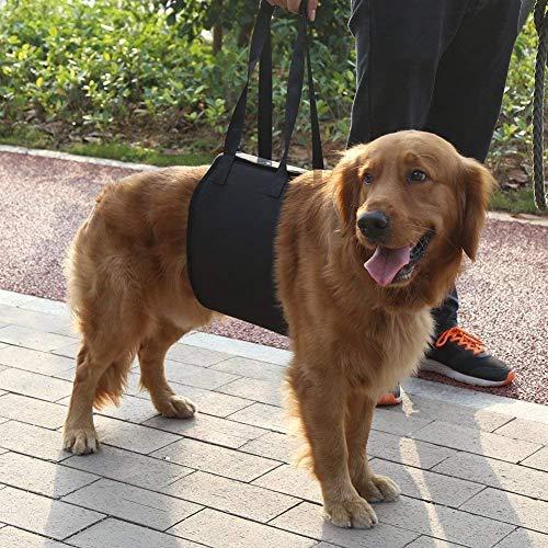 Cintura ausiliaria per gli animali domestici, imbracatura classica per sollevamento pesi, per animali anziani o malati di cane, per salire e scendere dalle scale, per entrare e uscire dai veicoli.
