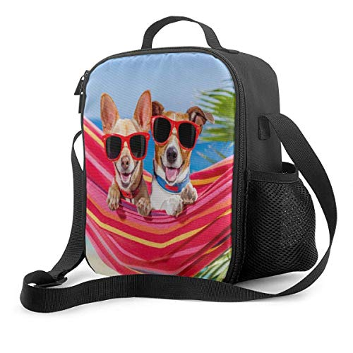 AOOEDM Lunch Box Insulated Dogs Hammock Summer Beach Lunch Bag for Women Men and Kids
