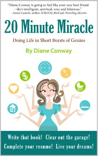 The 20 Minute Miracle: Doing Life in Short Bursts of Genius (English Edition)