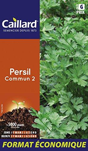 Caillard PFCD14400 Graines de Persil Commun 2