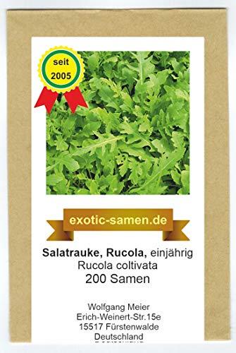 Rucola - Salatrauke - einjährig - Rucola coltivata - 200 Samen
