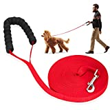 iNeego Dog Training Lead 30m Long Dog Leads Training Leash for Camping Tracking Training Obedience Backyard Play Strong Nylon lead with all Metal Components (30M with Handle, Red)