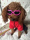 Enjoying Dog Goggles - Small Dog Sunglasses Waterproof Windproof UV Protection for Doggy Puppy Cat - Pink