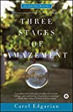 Image of Three Stages of Amazement: A Novel