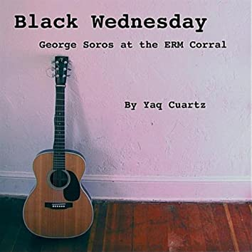 BLACK WEDNESDAY: GEORGE SOROS AT THE ERM CORRAL