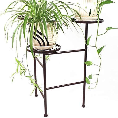 AINIYF Présentoir à Fleurs Présentoir en Fer forgé au Sol Moderne Salon Chambre Green Sage Orchid Présentoir à Pots de Fleurs (Color : Bronze)