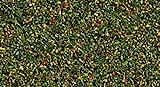 NOCH 08400 - Spielwaren, Streumaterial Blumenwiese -