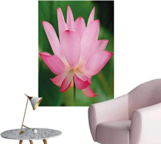 Anzhutwelve Pink Art Stickers Flower Theme Nature Inspired Beautiful Lotus Lily Blossom Romantic DigitalPink and Fern Green W24 xL36 Poster Print