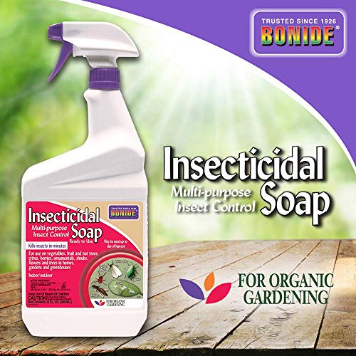 Bonide Products INC 912102 652 Ready-to-Use Insect Soap, Quart, 1