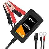 Ampeak Chargeur de Batterie Intelligent 12V 750mA, Maintient et Reconditionne Les...