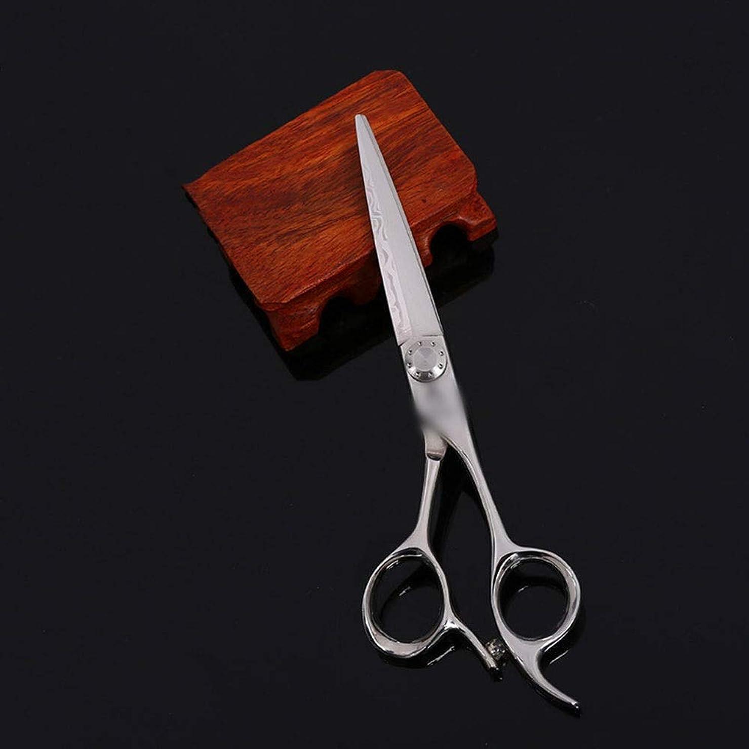 早く順応性のあるパンサー6インチ美容院プロフェッショナルハイエンド理髪はさみ、柳はさみフラットはさみ+歯はさみ モデリングツール (色 : Silver)