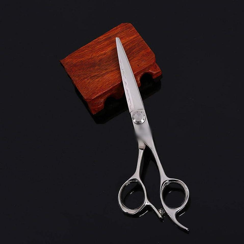 裁定合計貪欲Jiabei 6インチ美容院プロフェッショナルハイエンド理髪はさみ、柳はさみフラットはさみ+歯はさみセットせん断 (色 : Silver)
