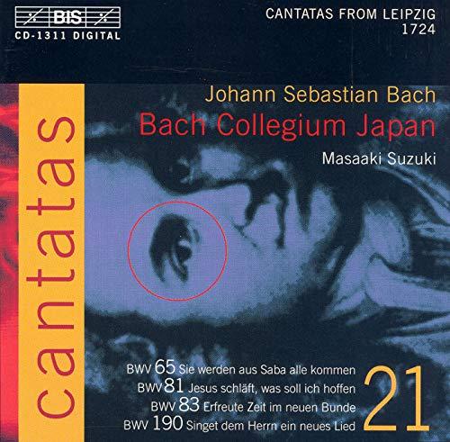 Erfreute Zeit im neuen Bunde, BWV 83: Chorale: Er ist das Heil und selig Licht