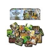 Starnberger Spiele - Waldbaden - Memospiel Naturliebhaber - Tolles Spiel für die ganze Familie -