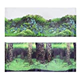 Balacoo Fondo del Acuario Pecera Telón de Fondo Pegatina 3D Tanque Mural Imagen Decoración Estanque Tanque Fondo 150X60cm