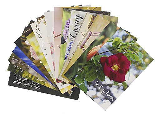 Bible Verse Christian Inspirational Quotes Postcards - 20 Glossy Floral Design Postcards - Bulk Set - 4 x 6 Inches