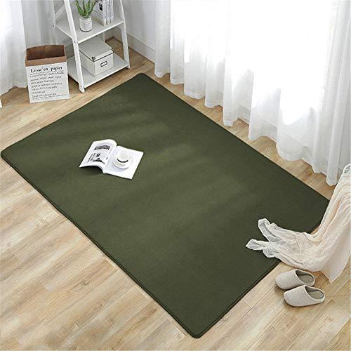 RUGMRZ Zacht absorberend water bank tapijt Donker groen korte pluis gemakkelijk zorg koraal fleece tapijt gemakkelijk te verzorgen tapijten