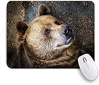 ECOMAOMI 可愛いマウスパッド クマの肖像画のクローズアップ 滑り止めゴムバッキングマウスパッドノートブックコンピュータマウスマット