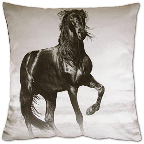 Bestlivings Dekokissen Fotodruck Motiv in 40x40 cm, Flauschig weiches Kissen in vielen Motiven erhältlich (Design: Pferd)