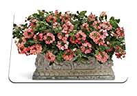 26cmx21cm マウスパッド (バーベナ花花壇緑) パターンカスタムの マウスパッド