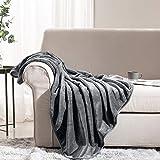Leeden Ultra Soft Fleece Blanket Queen Size All Season Flannel Microfiber Throw Blankets for Couch Sofa Bed Thick Warm Fuzzy Plush Anti-Static Lightweight (Dark Grey,90'x 90')