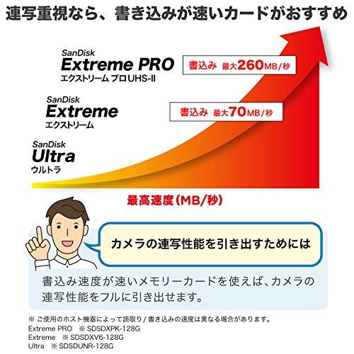 【サンディスク正規品】SDカード256GBSDXCClass10UHS-I読取り最大120MB/sSanDiskUltraSDSDUN4-256G-GHENNエコパッケージ