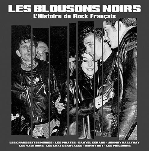 Les Blousons Noirs/l Histoire du Rock FR